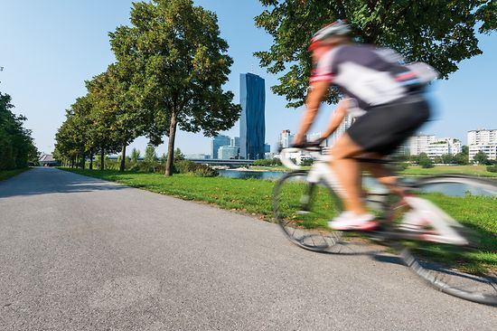 Cyclists on the Danube Island